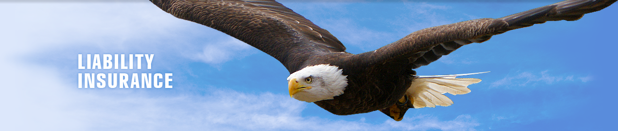 Professional Liability Insurance and Eagle